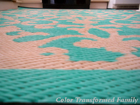 This Rug Is Made From Recycled Plastic, Resists Moisture, And Staining. If  It Gets Really Dirty We Can Just Take It Outside And Hose It Off.