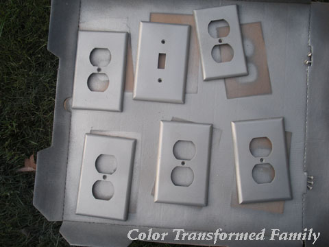 Spray Paint Color Transformed Family