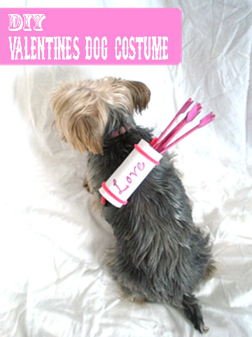 DIY VALENTINES DOG COSTUME