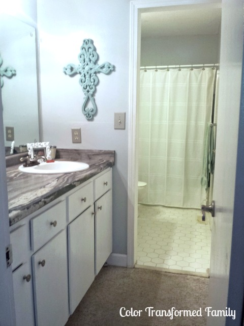 sherwin williams passive, master bath