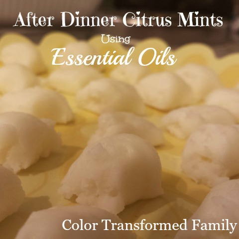 After Dinner Citrus Mints
