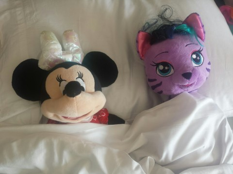 Purchase your souvenirs ahead of time for your Disney Trip
