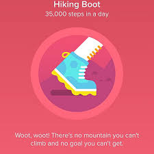 hiking boot badge fitbit