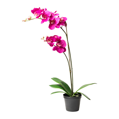 fejka-artificial-potted-plant-lilac__0367989_pe549550_s4